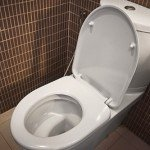 clogged toilet and toilet drain cleaning