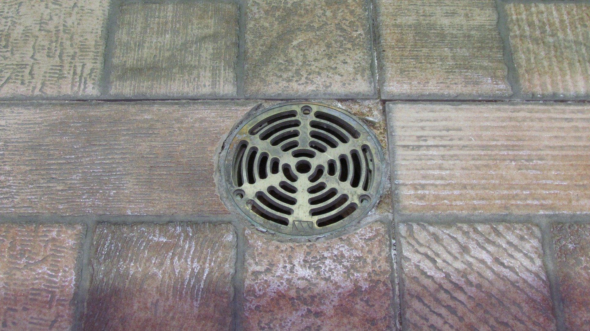 Bat Floor Drain Cleaning Services